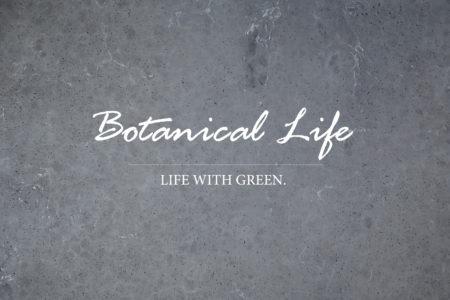 生活情報:植物のある暮らし🌳